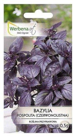 Bazylia pospolita czerwonolistna 0,5g