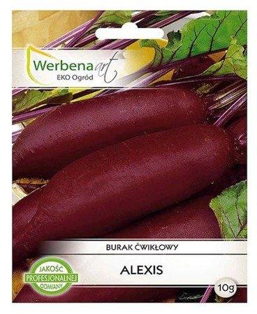 Burak ćwikłowy Alexis  (Beta vulgaris L.) 10g