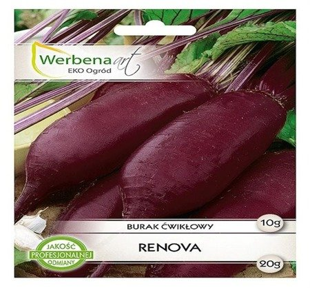 Burak ćwikłowy  Renova (Beta vulgaris L.) 10g