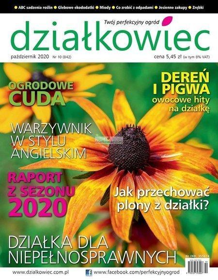 Działkowiec 10/2020