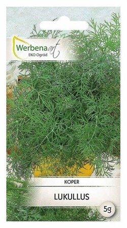 Koper Anethum Lukullus (graveolens L.) 5 g.