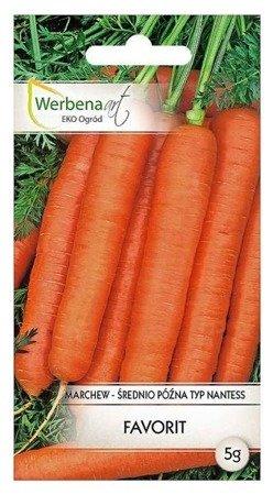 Marchew jadalna Favorit (Daucus carota L.) 5g