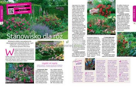 Mój Ogródek 9/2020