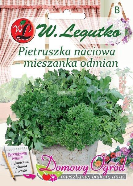 Pietruszka naciowa - mieszanka odmian (5 g) - Domowy Ogród