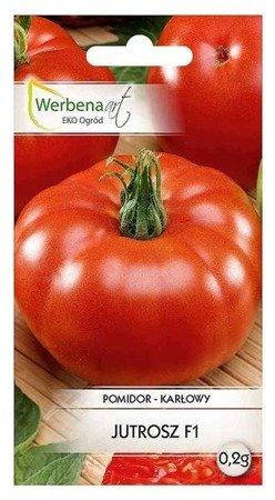 Pomidor karłowy Jutrosz (Solanum lycopersicum L.) 0,2g