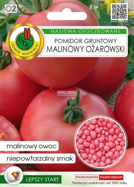 Pomidor malinowy Ożarowski (100 nasion)  - nasiona otoczkowane