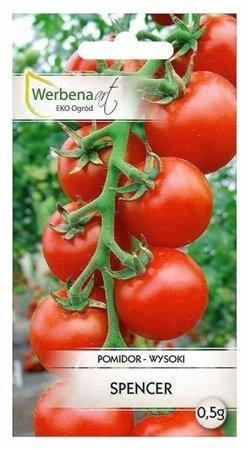 Pomidor wysoki Spencer (Lycopersicon esculentum Mill) 0,5g
