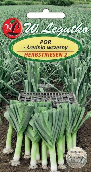 Por Herbstriesen 2 - śr. wczesny (1 g)
