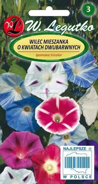 Wilec, Powój pnący - mieszanka o kwiatach dwubarwnych (2 g)